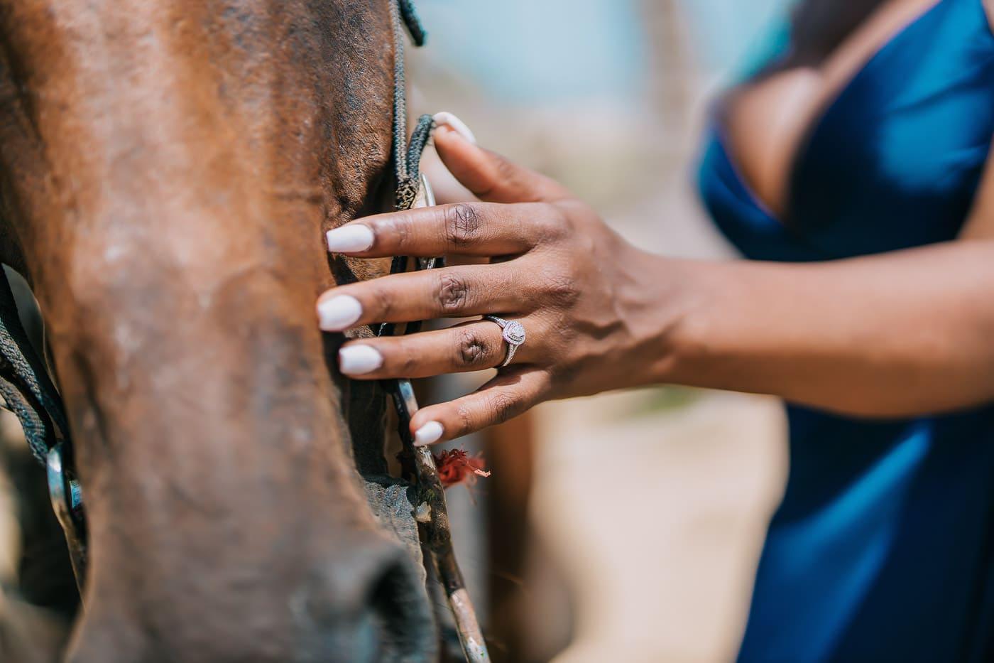 horse photoshoot